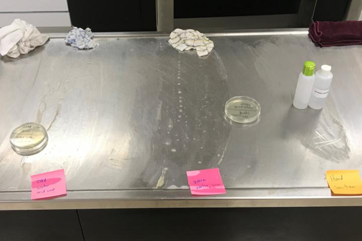Banishingbacteria