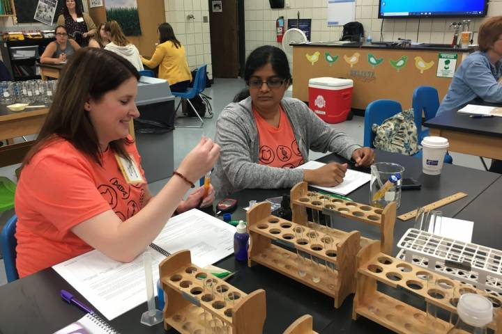 Feed the World 2019 workshop engages newteachers